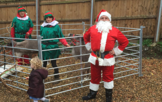 Broadland View santa and reindeer